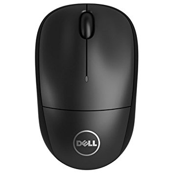 Mouse Dell