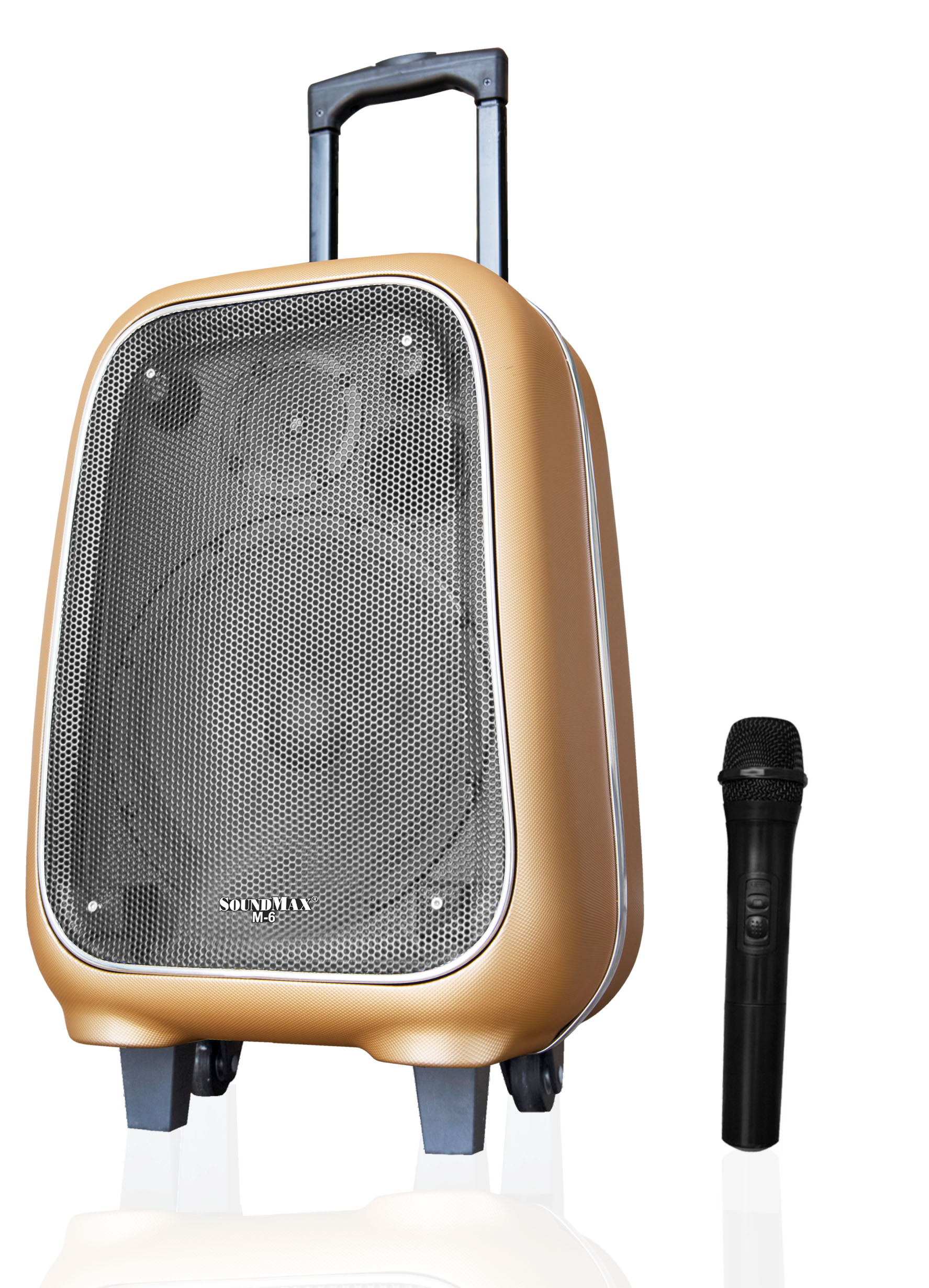 Loa SoundMax trợ giảng M6