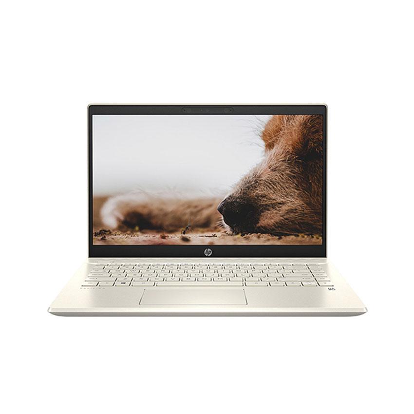 Laptop HP Pavilion 14-dv0008TU (2D7A5PA) ( i5-1135G7/8GB RAM/512GB SSD/14 FHD/Win10/Office/Vàng)